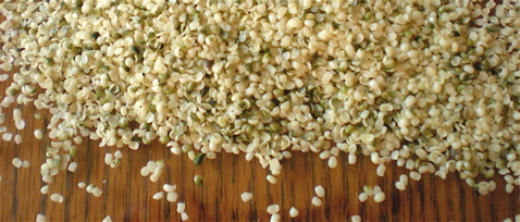hemp hearts, hemp benefits, hemp protein