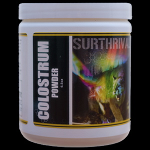 raw colostrum, colostrum powder, colostrum benefits, surthrival colostrum, antiaging food