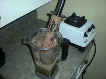 vitamix smoothie, herbal elixirs, vitamix ice cream, elixir of life, elixir of immortality